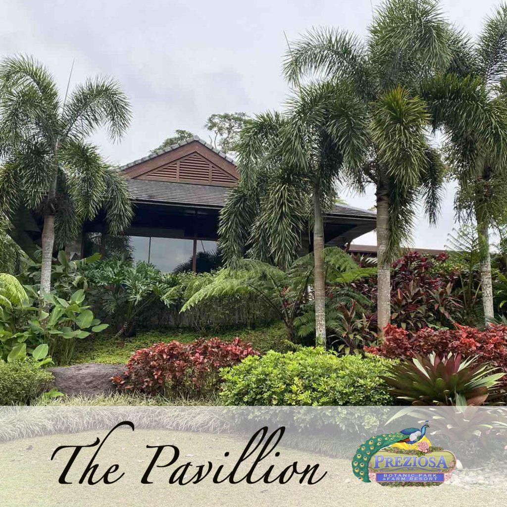 the pavilion1